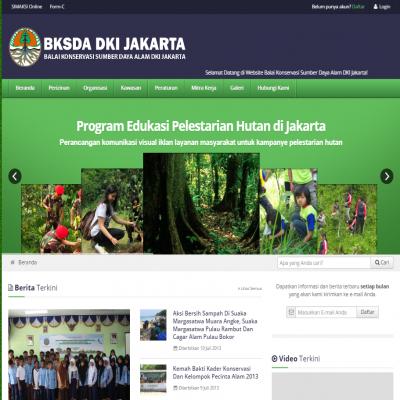jasa website WWW.BKSDADKI.COM